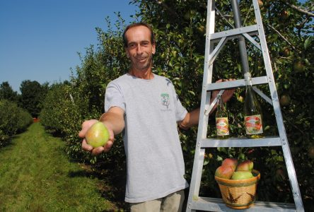 Le verger Ferland se distingue aux Canadian Cider Awards